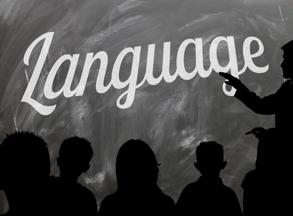 school vrijwilliger taalcoach
